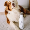 Bouteille isotherme chien 500 ML QWETCH QD3372-2