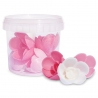 Décors azymes 6 roses Scrapcooking 2264